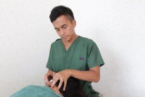 鍼灸施術をする様子